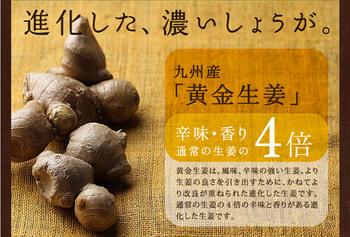 shouga_25.jpg